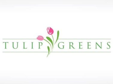 Stable_Tulip Greens